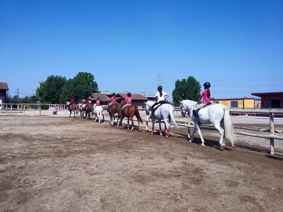 Cursos equitación Madrid
